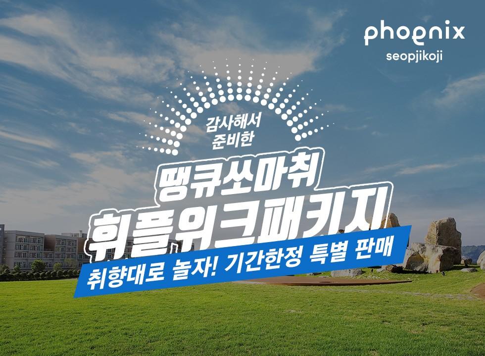 3월 휘닉스 플레이 위크 PKG  54평형