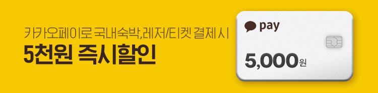[제휴]5월카카오페이